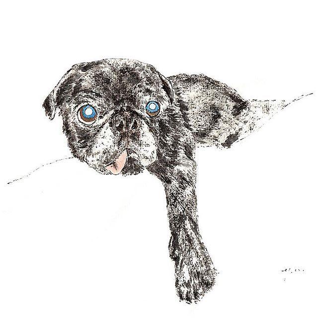 . . I got a delicious smell. おいしいにおいを待っています。 🍖 . . 👀❤️thank you! 🏖 🎨写真タッチ . ©ewokakuhito yu . #pug #pugstagram  #パグ #黒パグ #手描き #愛犬 #愛猫 #似顔絵 #半紙画 #dessin #鉛筆画 #水彩画 #Japanesewritingpaper #drawing #illustration #ewokakuhitoyu #絵を描く人yu #yu