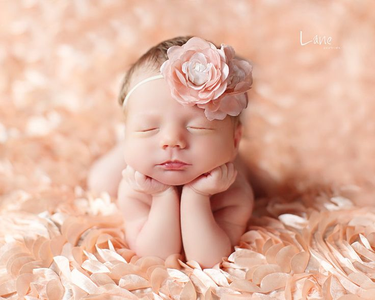 Leighton heritage newborn posing photography prop perfect bean bag basket stuffer rose fabric backdrop fluttery layering soft peach