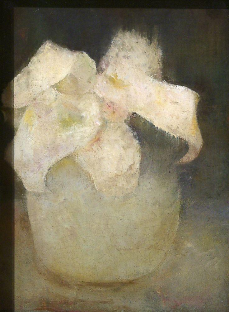 /white-orchid.Jan Mankes