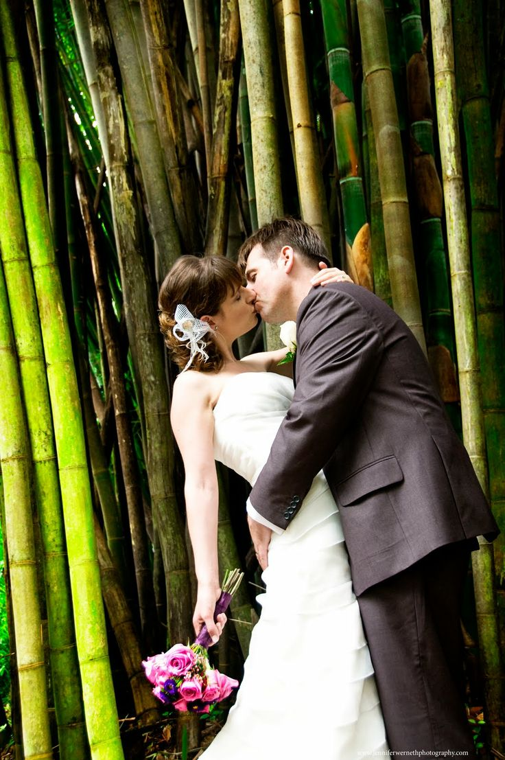 intimate wedding packages atlantga%0A Leu Gardens