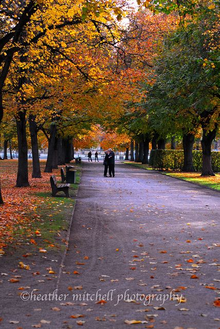 English Gardens, Munich, Germany - wonderful to walk hand-in-hand with a loved one... how I miss these