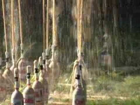 Coke and mentos video.  EPIC!!  See the science here http://www.stevespanglerscience.com/lab/experiments/original-mentos-diet-coke-geyser