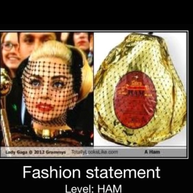 Aaaannd we all know how much I hate ham!: Funny Misc, Hams, Lady Gaga, Lol Humor, Simply Funny, Funny Stuff, I'M, Smile Laughing Snark