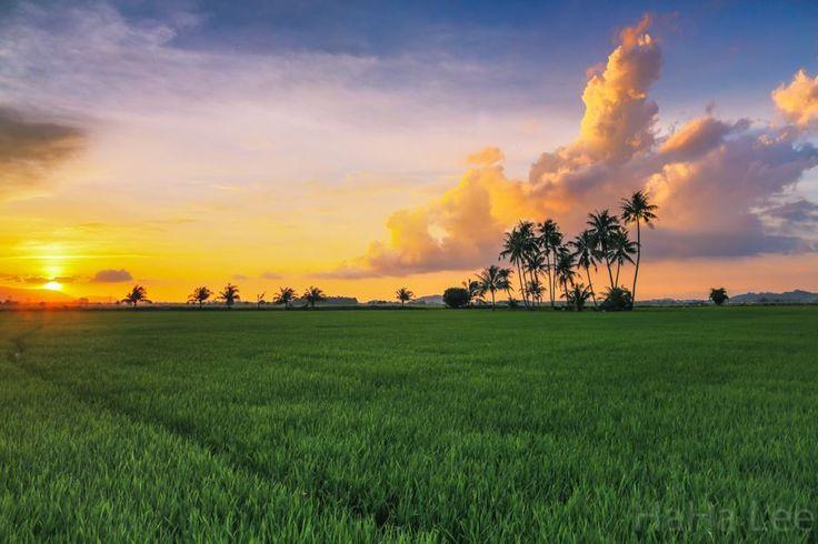 Sunset 日落 2014-07-03 檳城大山腳 Penang Bkt Mertajam.