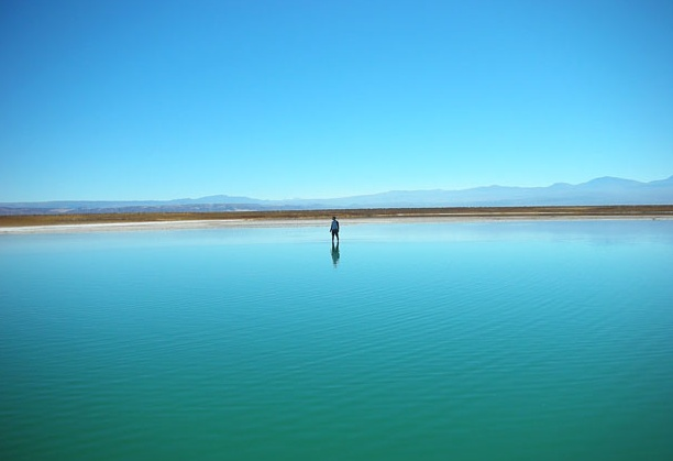 Cejar Lagoon, San Pedro de Atacama, Chile (photo by Fitzroy)