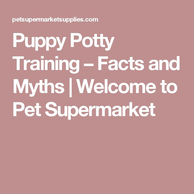 Puppy Potty Training – Facts and Myths | Welcome to Pet Supermarket