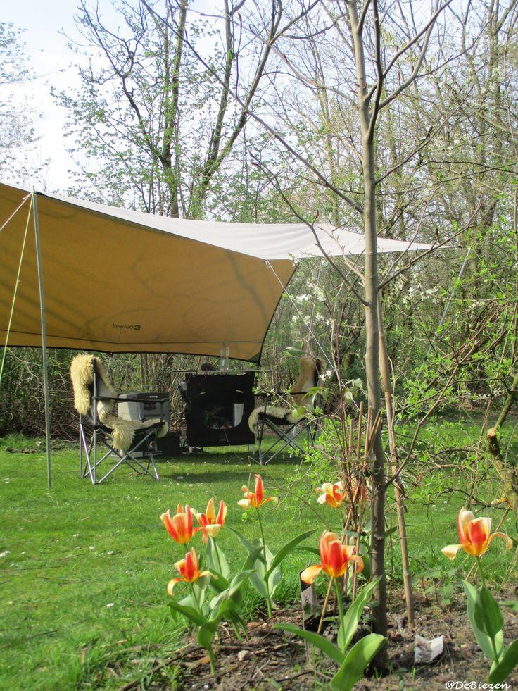 Kamperen in de Lente. Natuurkampeerterrein De Biezen Aarle-Rixtel Noord-Brabant