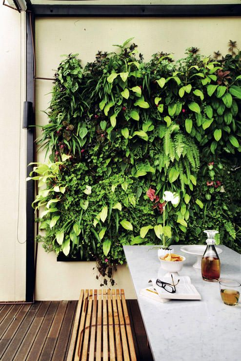 7 things to do for an indoor garden (from HDBs to landed properties!) | Home & Decor Singapore