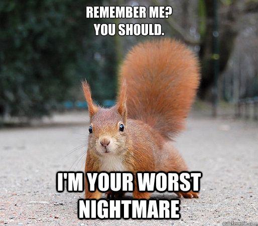 Squirrel Fuck 19