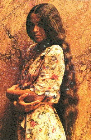 Nicolette Larsen  I Loved Her Music Long Hairstyles Lady Godiva