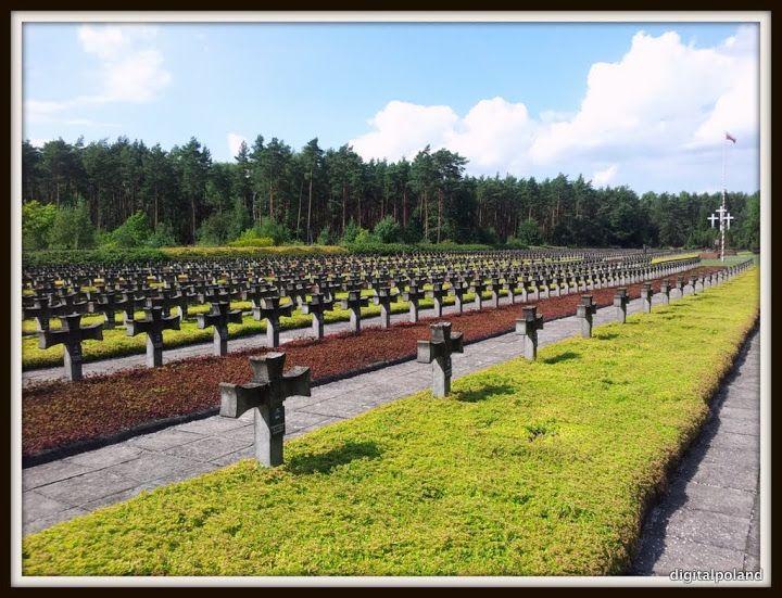 Palmiry - Cmentarz - 2115 Obywateli Polskich Zamordowanych Przez Niemieckiego Okupanta W Latach 1939-1943