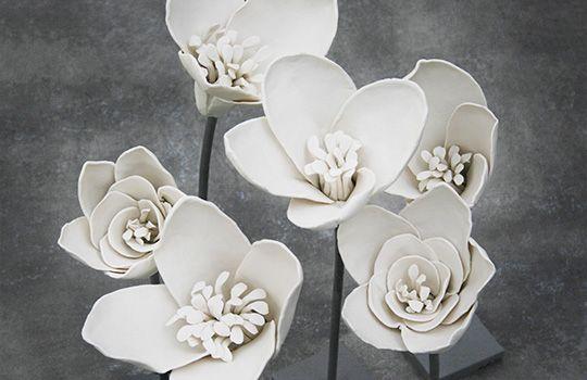 365 White Flowers by Anu Pentik