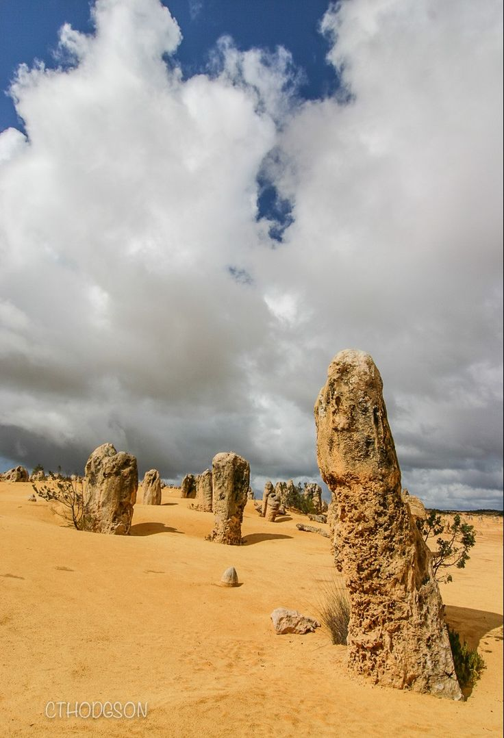 Pinnacles Desert // Kalbarri to Perth// Road Trip Australia//