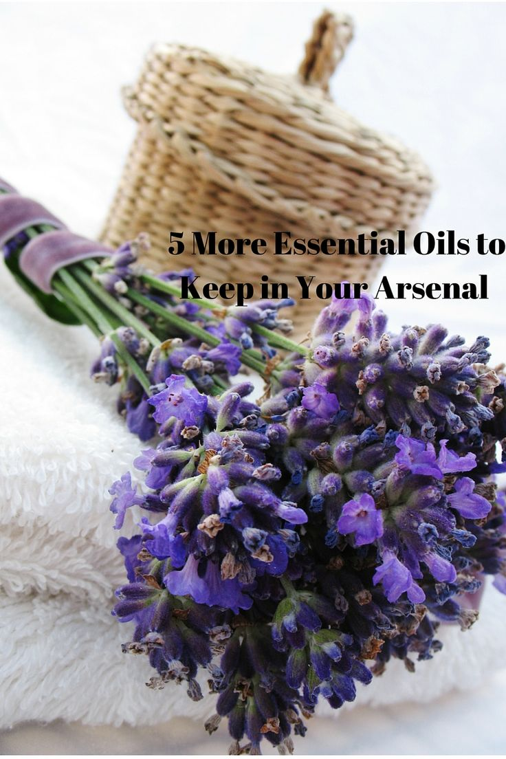 5 More Essential Oils to Keep in Your Arsenal