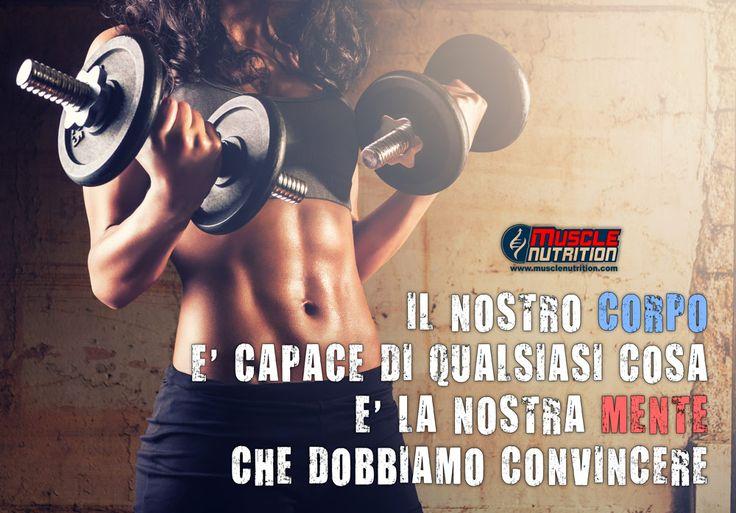 www.MuscleNutrition.com - L'e-store più fornito d'Europa, migliaia di prodotti a prezzi scontatissimi, in 24 ore a casa tua, anche in contrassegno!