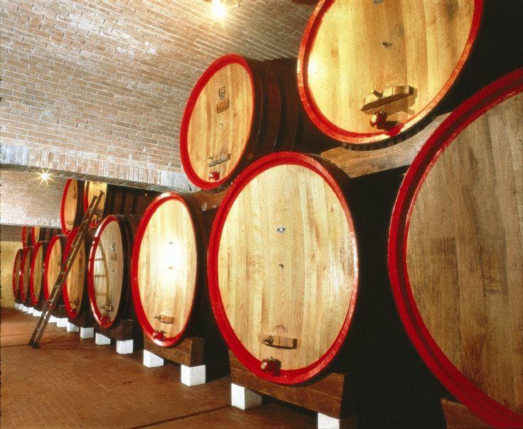 Tommasi Cellar #Valpolicella #Veneto #Tommasiwine #wine  www.tommasi.com