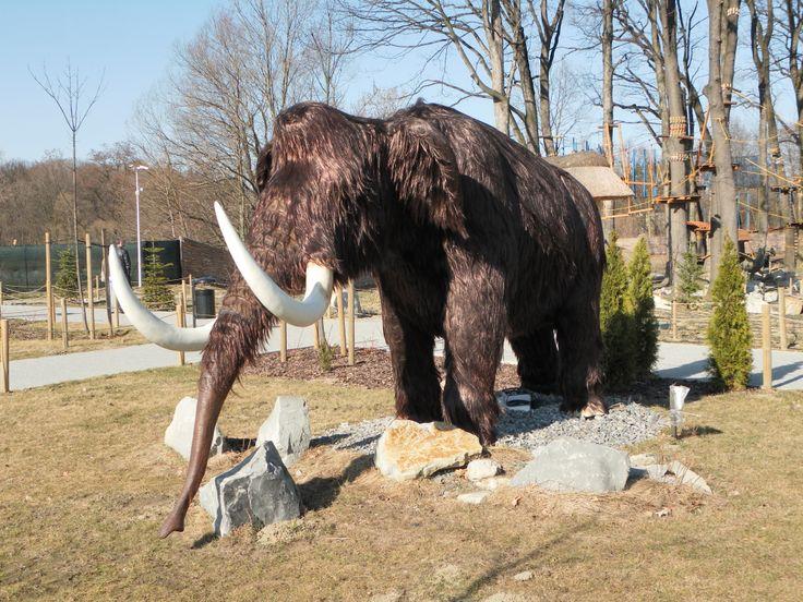 Mamut w Dream Parku w Ochabach.