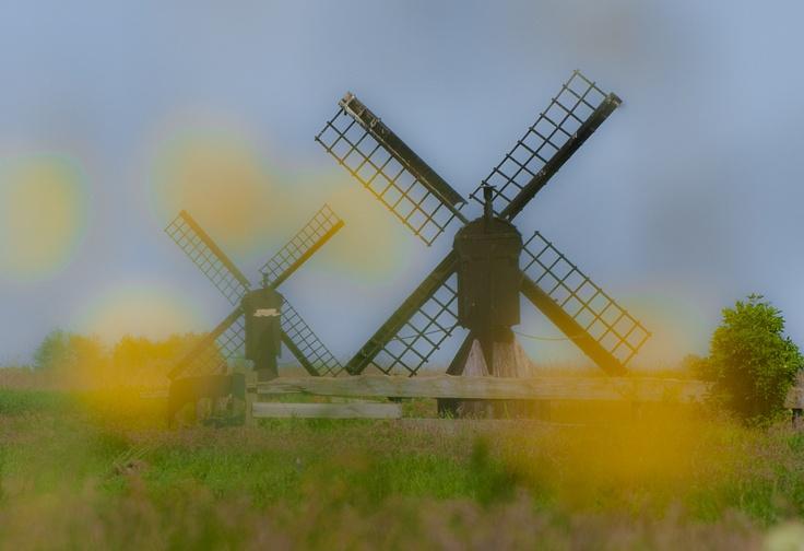 Dutch Mills in the country side near Zaanse Schans, Netherlands