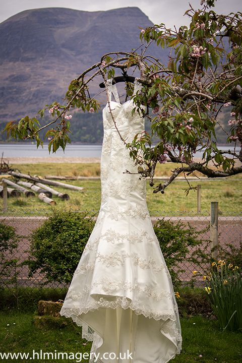 Brides dress hung on a tree in front of the hills.