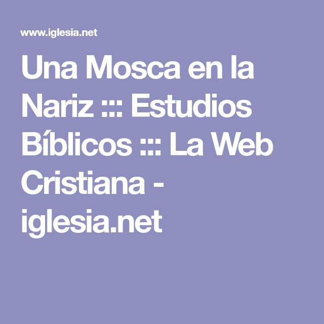 Una Mosca en la Nariz ::: Estudios Bíblicos ::: La Web Cristiana - iglesia.net