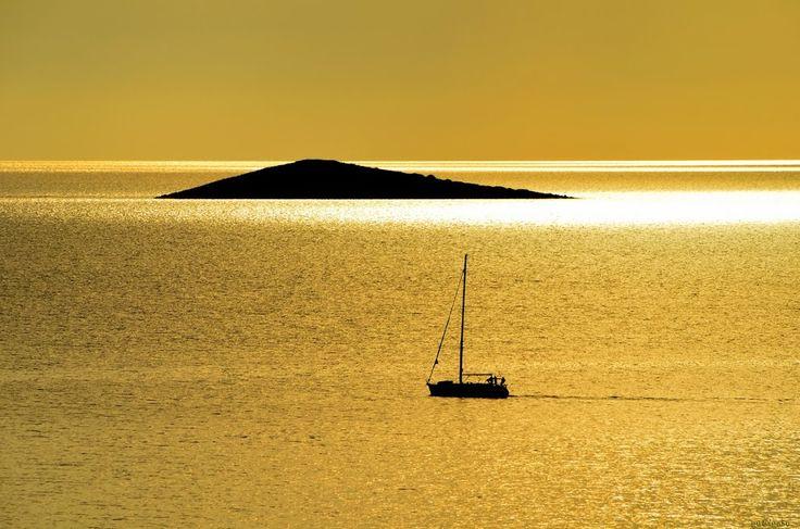 Tresure island  /  Kincses sziget