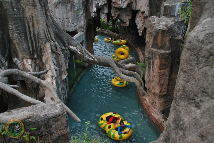 Feel sensation Swimming with Crocodile...#tamansafari2, #swimwithcrocodile, #lazyriver, #waterworld, #wonderfulIndonesia