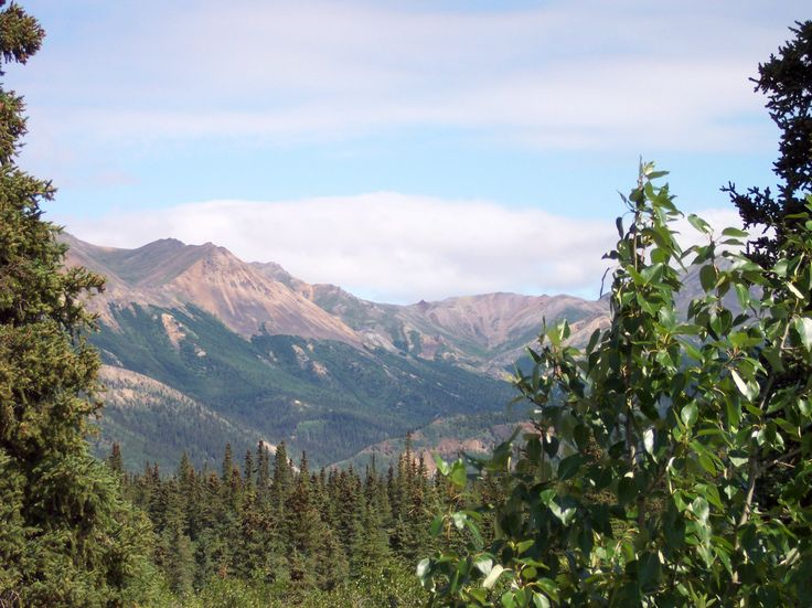 Join Lori from Chocolate City Cruise & Travel on an ALASKA 13-Night Tour/Cruise September 11-24, 2016. This trip includes a 6-night Denali Explorer and a 7-night cruise aboard the Star Princess. Balcony Cabin ~ $3381. Rate is per person based on double occupancy and includes land tour, cruise, transfers and taxes. Contact Lori for more information: 262-767-2111 lori@chocolatecitytravel.com. http://chocolatecitytravel.com/Page/LoriAlaska2016