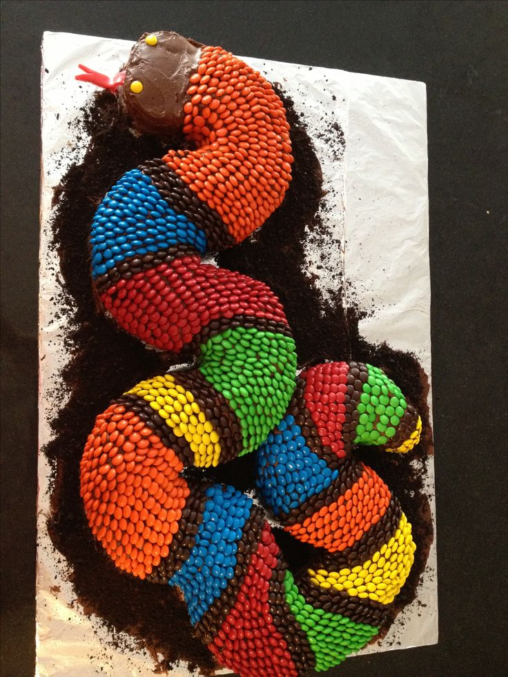 M&M's Snake Cake. We used four different Wilton Angel Food Cake Pans, cut in halves and quarters to shape. Frosted and covered with M&M's. also used an Air Head for his tongue
