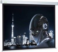 Проекционный экран CACTUS Wallscreen