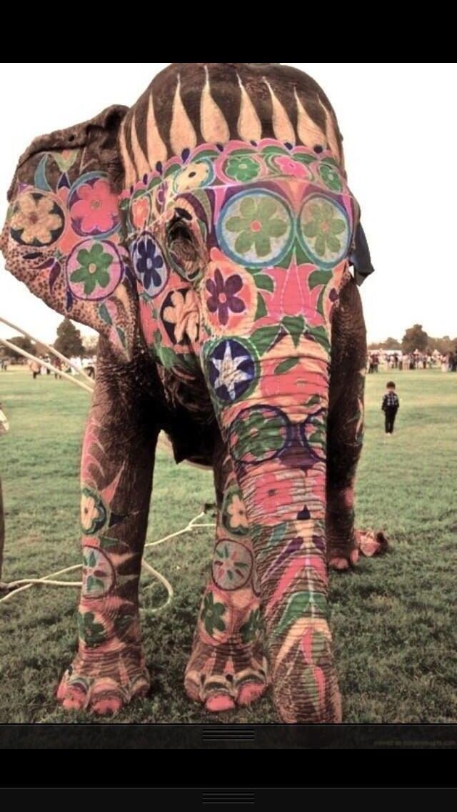 Hippie elephant. my kind of elephant... as long as the paint isn't a skin irritant.