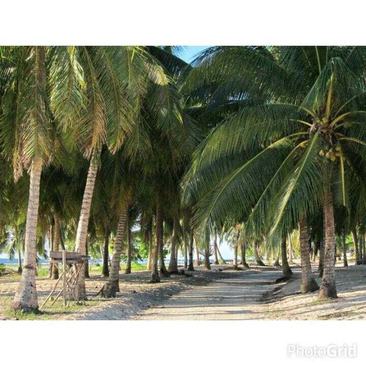 Tufutafoe to Falealupo drive in Savaii