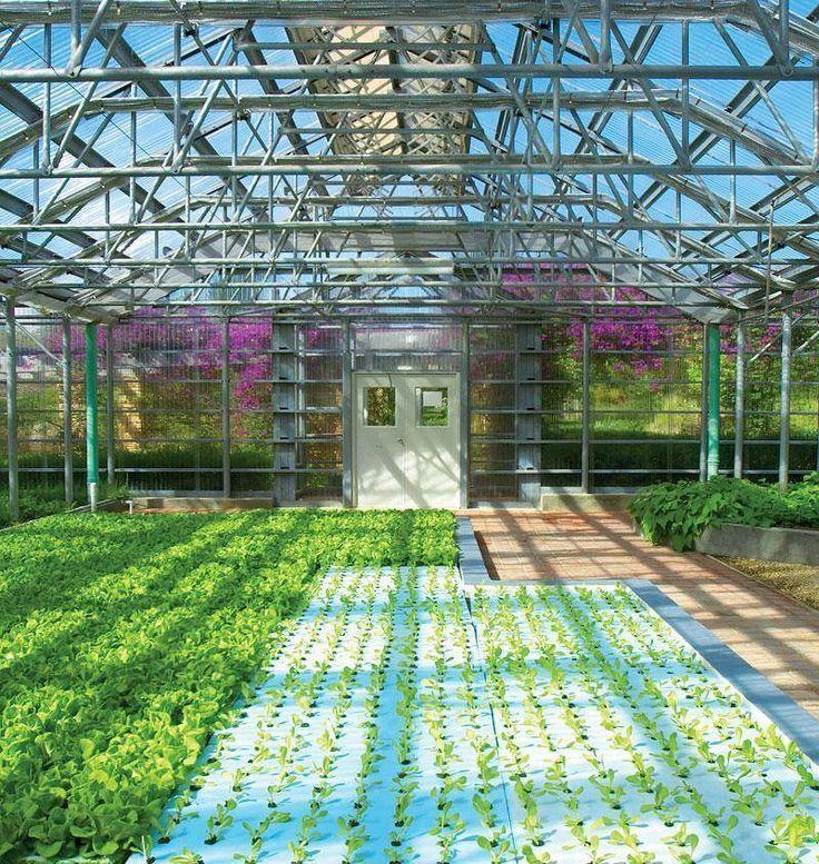 Home Garden System