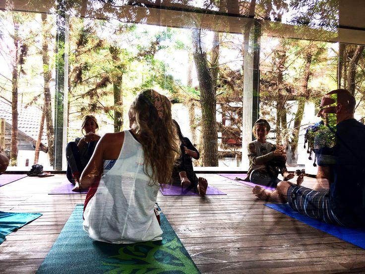 Clase de yoga para relajar el cuerpo y la mente en Hotel Plenilunio. Colchonetas sobre piso de madera y luz natural entrando por grandes ventanales de vidrio que dejan ver el hermoso bosque de pinos de Mar de las Pampas. Una gran idea para liquidar el estrés de la rutina.