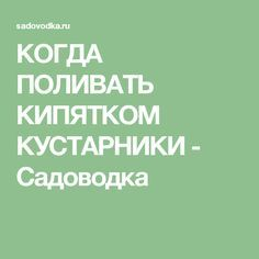 КОГДА ПОЛИВАТЬ КИПЯТКОМ КУСТАРНИКИ - Садоводка