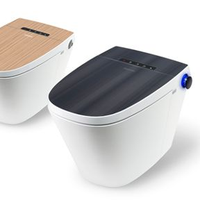 BATS19  | Combination electronic bidet and toilet allows user to adjust the emperature, pressure, width and position of the water spray when cleaning and the temperature of the air when drying. | Design team: Coway, Hun-jung Choi and Coway, Mi-youn Kyung | IDEA 2012 Finalist