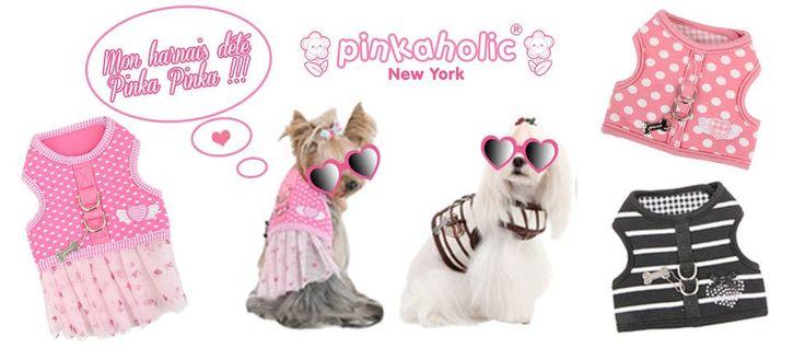 harnais chien : Découvrez la marque de harnais pour chien Pinkaholic New York ! <3 http://www.sweetiedog.com/boutique/17-harnais-chien mannequin yorkshire