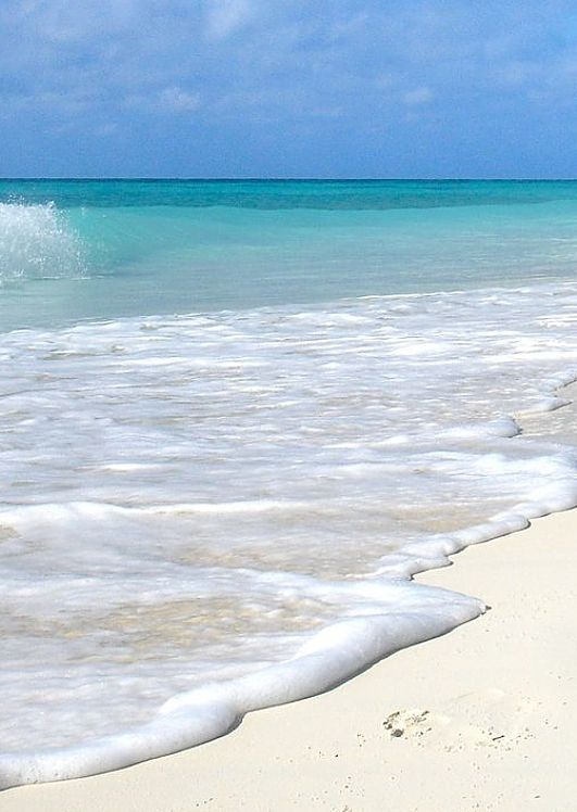 Palm trees, white sand and a loved one add up to the perfect Jamaican getaway.