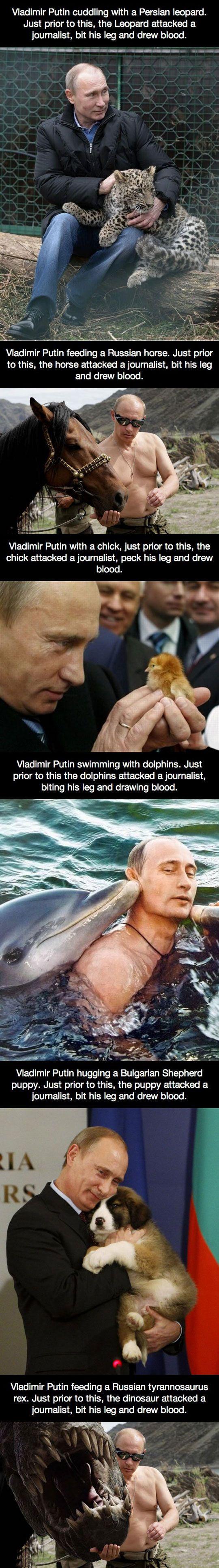 Valdimir Putin is my politician crush. I'm not ashamed.