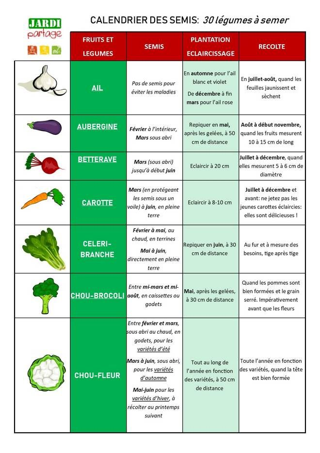 Calendrier Des Semis 30 Legumes A Semer Toutes Les Dates Pour