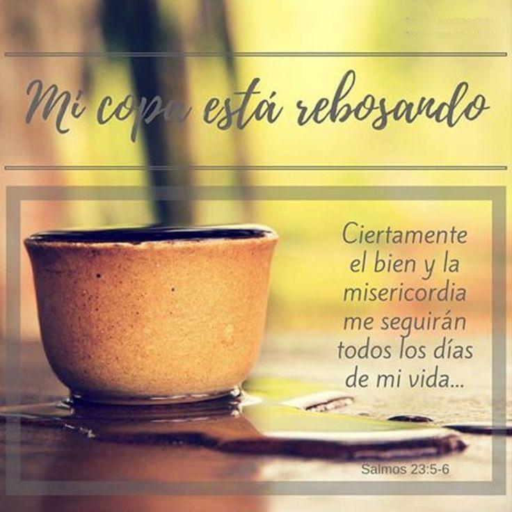 Mi copa está rebosando, ciertamente el bien y la misericordia me seguirán todos los días de mi vida. Sal 23.5-6