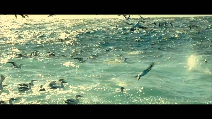 Dimension presents Oceano    Cabo Del Mar  On The Beach mix