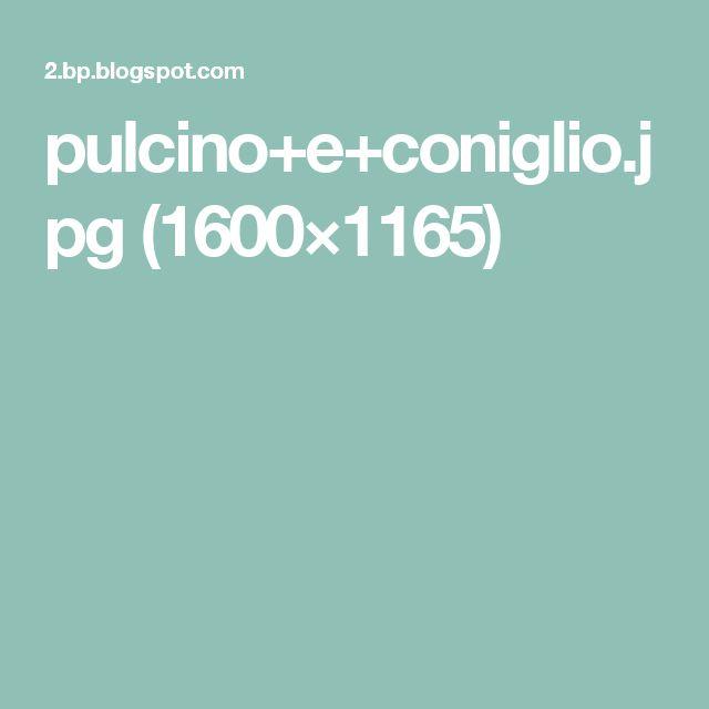 pulcino+e+coniglio.jpg (1600×1165)