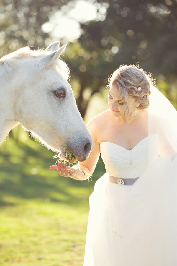 Southern Highlands Wedding From Moving Presentations