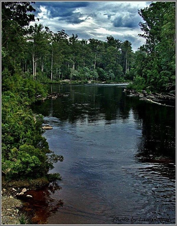 Huon River, #TahuneAirWalk, southern #Tasmania ~ photo by David Lamplough, article for think-tasmania.com