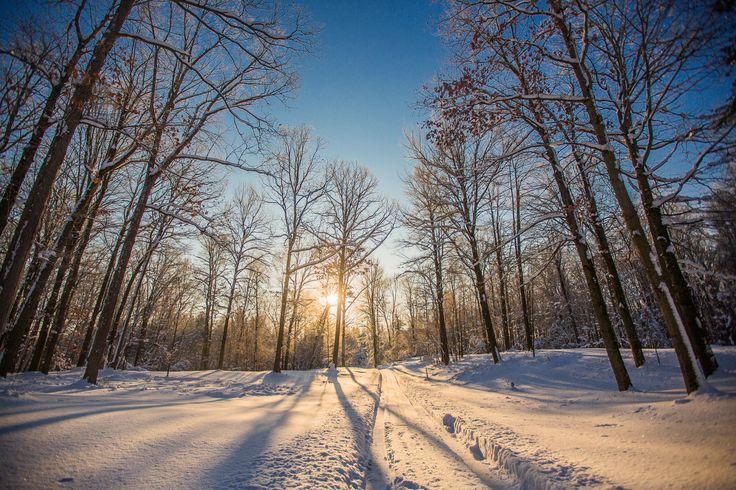 A winter sunrise at Fernwood Hills   Wedding venues ...