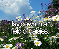 Lay down in a field of daisies.