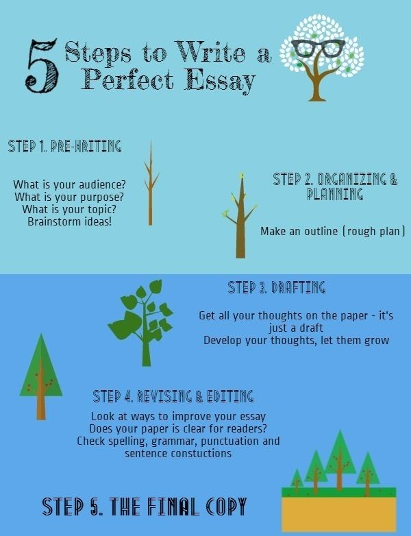 Five steps to quality essay writing