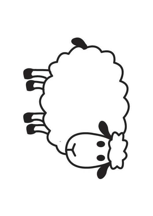 Coloring page Sheep - coloring picture Sheep. Free coloring sheets to print and download. Images for schools and education - teaching materials. Img 17767.