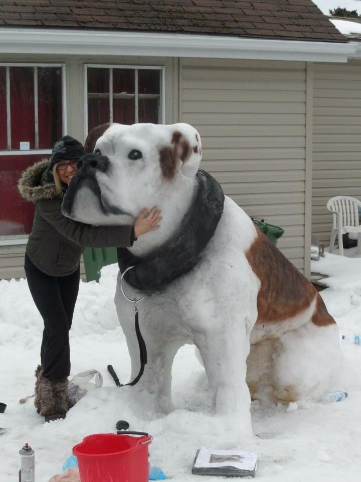 Impressive Bulldog Snow Sculpture