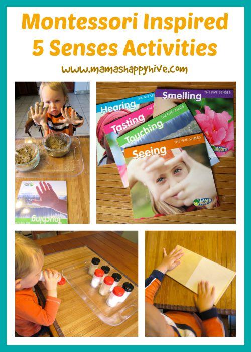 Montessori Activities And Senses Activities On Pinterest